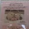 和歌山旅・その7「アドベンチャーワールドで子パンダに悶絶」