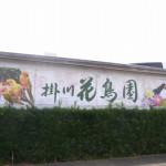 掛川花鳥園 ~萌えと恐怖のあいだ~
